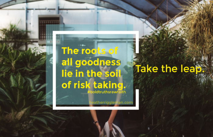 The Roots of All Goodness Lie In Risk Taking
